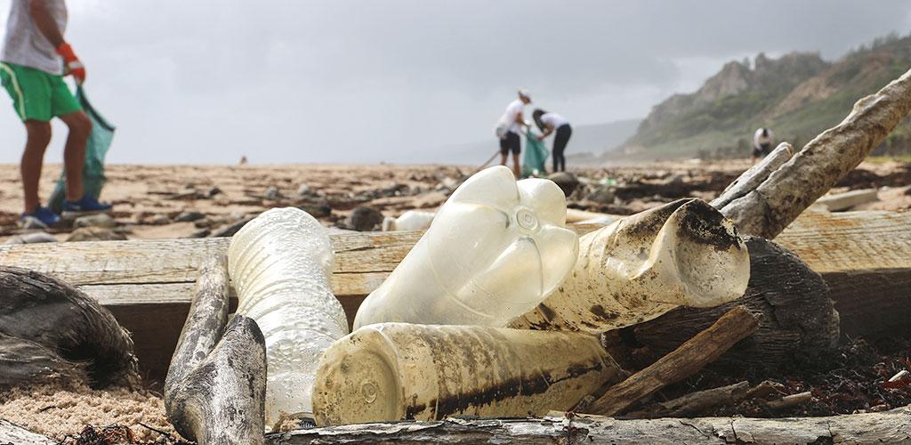 ocean and beach waste